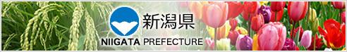 新潟県ホームページ